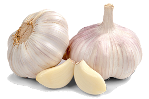 Garlic: A Modern Super Food?