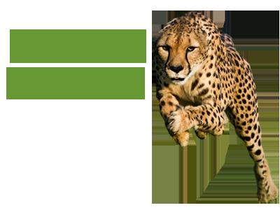 Dr Michael Colgan: Elastic Muscle