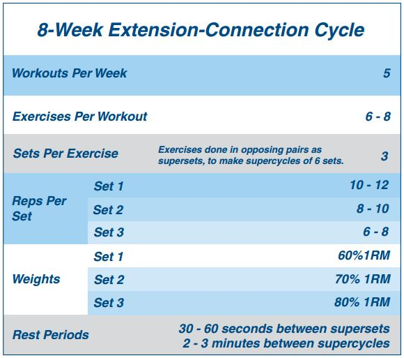 8 week extension-connection cycle